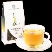 Иван-чай с липой, крупнолистовой